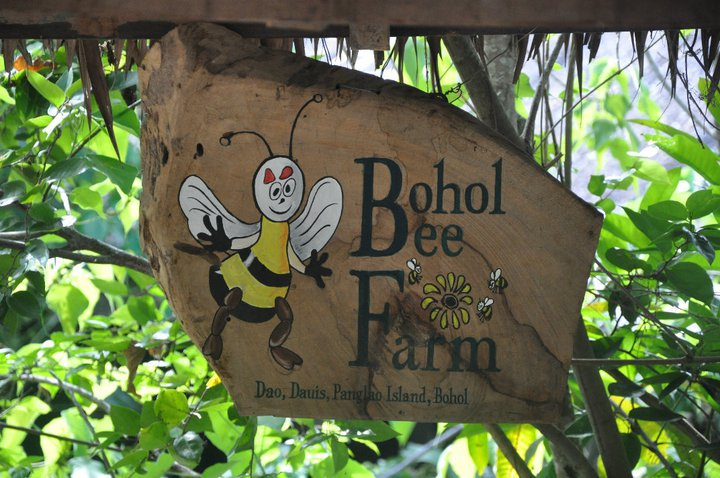 bohol-bee-farm