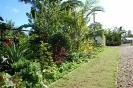 Garden Pictures_3